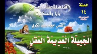 الجميلة العديمة العقل (1)  - القس أمجد سعد ذكري