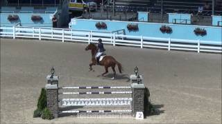 Captain Jack Sparrow at Brandywine Valley Summer Series I 2014 Low JrAO Jumper Classic Friday