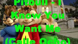 Pitbull - I Know You Want Me lyrics - mixed chipmunks
