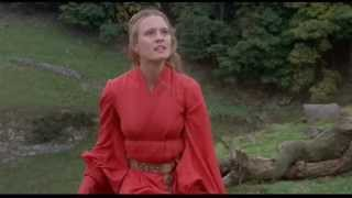 Princess Bride -Captain Swan