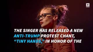 Fiona Apple releases anti Trump song
