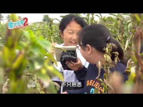 魔法2-第五集 食品安全新趨勢 【台南安定國小】 - YouTube