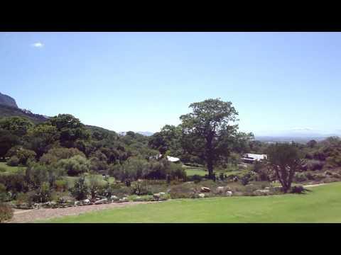 Kirstenbosch botanical garden Cape town, South Africa Capetown