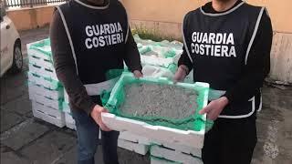 GIRO DI CRONACA 25 GEN