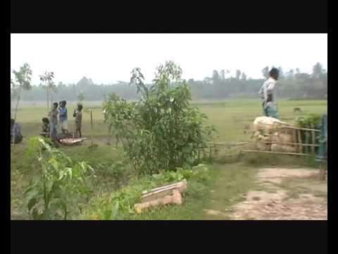fishing in nabigonj bangladesh
