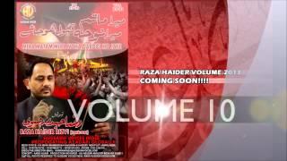 Raza Haider Noha 2013 - Audio Promo