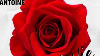 DJ Antoine - La Vie En Rose (DJ Antoine vs Mad Mark 2k17 Mix) - Official Audio