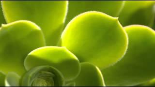 Hadouken - Levitate(B3tt3r Remix)