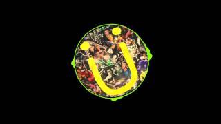 Levels (Skrillex Remix) vs Terror Squad (Bro Safari & Ricky Remendy)  IV2-