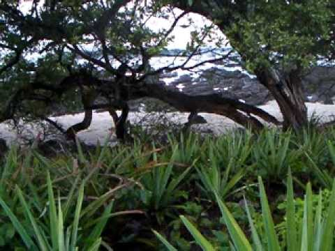 Rocky Point, Nicaragua Oceanfront Property, Lot 25