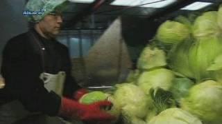 Terroir: la choucroute alsacienne