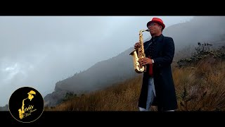 Luis Fonsi - Despacito ft. Daddy Yankee - COVER SAX (video oficial)