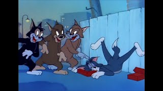 Tom and Jerry, 58 Episode - Sleepy-Time Tom (1951)