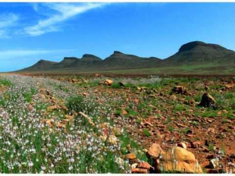 إكتشف جمال المغرب من شماله الى جنوبه في 3 دقائق Discover the landscape of Morocco in 3 minutes
