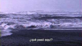 Birdy - Skinny Love (by Bon Iver) Español