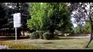 Ifrane : le Conseil communal instaure une amende pour dépôt d'ordures dans les parcs