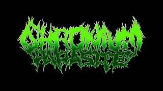 Parasitiphilia - Chromium Parasite