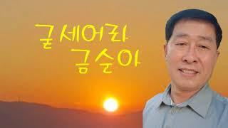 [TJ노래방라운지] 굳세어라금순아 - 현인