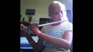 Funkytown Flute Cover
