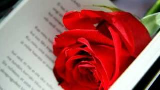 Memorias de Mi Vida (5) - Soberbia - Los Potros - Poemas de Amor