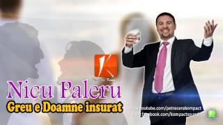 Nicu Paleru - Greu e Doamne insurat (Muzica de Petrecere) (Parodie)