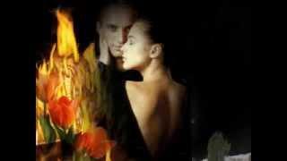 Огън и обич за двама Л  Иванова