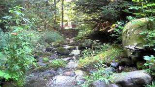 Flowing Mountain Stream Morning Meditative Relaxation Video - Live Unedited Nature Sounds (no music)