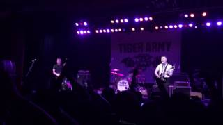 Tiger Army live - Rose of the Devil's Garden