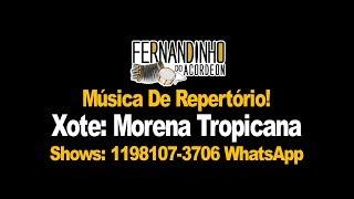 Repertório Xote - Morena Tropicana - Fernandinho Do Acordeon