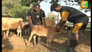 Newsmakers 2010: Raila Odinga