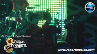 BANDAS SINALOENSES EN MONTERREY - BANDA NEGRA - EL AGUILA BLANCA