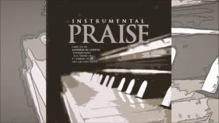 Instrumental Praise 7 - Ele vem pra te salvar