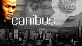 CANIBUS-NIGGANOMETRY