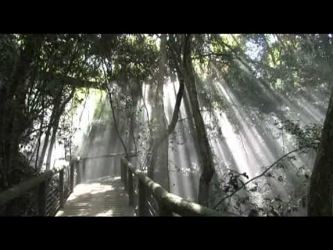 Plettenberg bay Forever Resort – South Africa Travel Channel 24