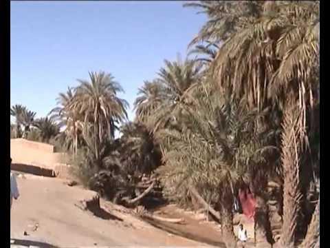 OASIS near SHGAGA SANDS SAHARA MOROCCO