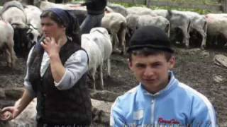 """robert tarnaveanu   """"draga sfanta marie"""""""