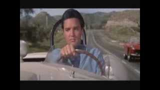 Funny Scene From Spinout-Elvis Presley & Shelley Fabares