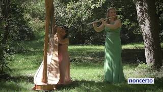 Debussy - Afternoon of a Faun (noncerto 71.3 Deutsch & Belvedere) Classical Music Video