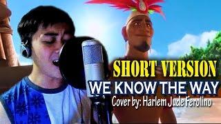 We Know the Way - SHORT COVER - Disney's MOANA