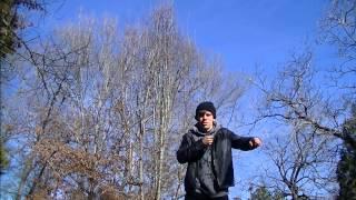 Anthony Morales| Flume- Ezra | O.V.D