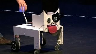 Robots are not perfect - Funny robot fail compilation