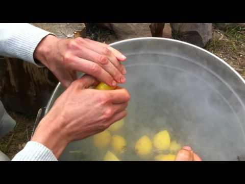 "Herbal Tea after 3-5 days of Starvation (Goltis Seminar ""Healing Impulse"", Ukraine)."