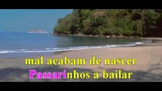 Passarinhos a Bailar  Karaoke   YouTube