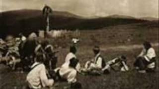 Românească rară şi Învârtita / Two melodies for dance from Transylvanian Plain