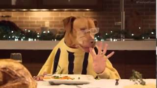 Lustige Tiere | Beim Essen