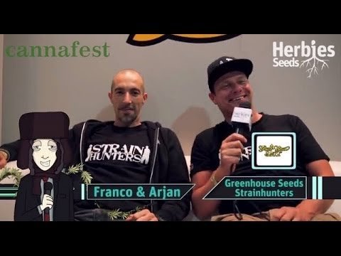 Green House Seeds - Strain Hunters @ Cannafest 2013 Prague / Praha