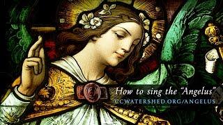"Tutorial • Sing the ""Angelus"" using Gregorian Chant (Dom Chapentier)"