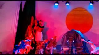 Ciclo da vida- Ballet Danser o rei leão