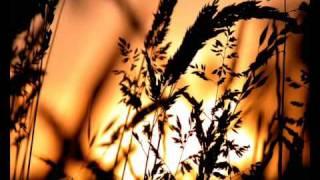 Consoul Trainin feat Joan Kolova - Stop