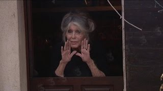 EXCLU - Brigitte Bardot nous a exceptionnellement ouvert les portes de sa maison dans le Var
